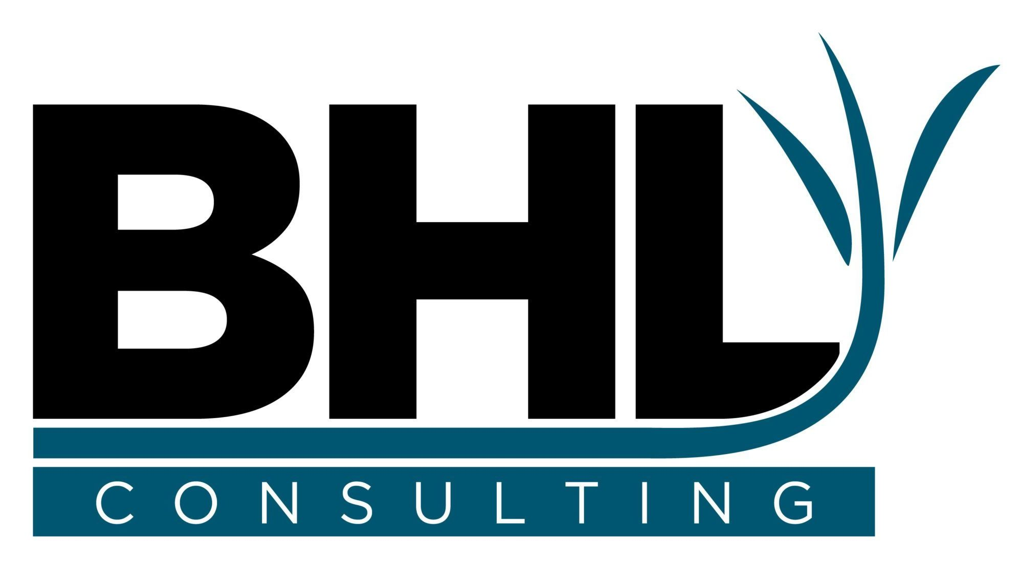 BHL Geosteering Consulting